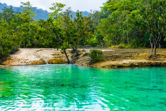 亦称鲜绿色水池Sa Morakot, Khao Pra轰隆Khram野生生物保护区, Krabi,泰国 绿色热带湖,东南亚 免版税库存照片