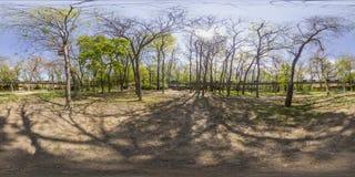 亦称360度Dzhendem tepe青年时期的全景喂 图库摄影
