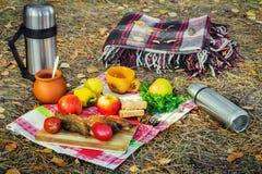 产品和一条野餐毯子在森林 免版税图库摄影