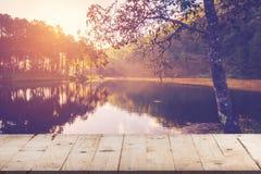 产品显示的空的木在池塘的桌和蒙太奇浇灌a 库存照片