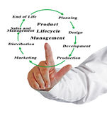 产品的生命周期管理 免版税库存照片