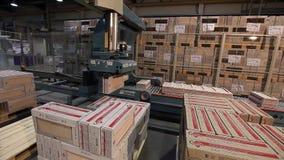 产品自动包装在箱子在传动机,特写镜头,陶瓷砖包装,传动机,现代工厂的 股票视频