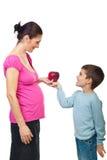 产生他的母亲的苹果男孩怀孕 免版税库存图片