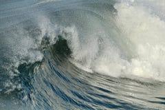 亨廷顿海滩中央公园 免版税库存图片