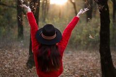 享受一秋天天在森林里 库存图片