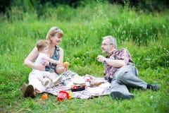 享受一顿野餐的美丽的家庭在好的公园 库存图片