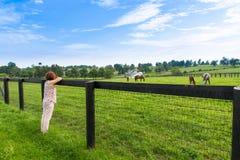 享受乡下视图的妇女 库存照片
