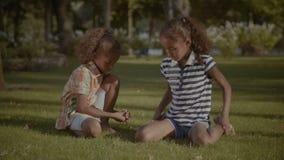 享受休闲的轻松的孩子在夏天公园 影视素材