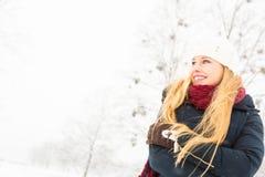 享受冬天的少妇 免版税库存图片