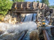 享受北美灰熊河奔跑,迪斯尼加利福尼亚冒险公园的椽木 库存图片