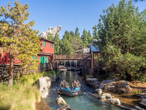 享受北美灰熊河奔跑,迪斯尼加利福尼亚冒险公园的椽木 库存照片