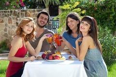 享受午餐的小组朋友户外 免版税库存图片