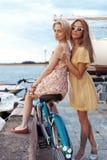 享受在口岸的两个女朋友晚上日落 免版税库存图片