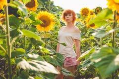 享受在向日葵的领域的女孩自然在日落, 免版税库存照片