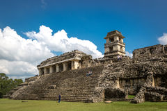 享受在帕伦克废墟的当地人民一美好的天在墨西哥 免版税库存图片