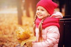 享受在晴朗的同水准的愉快的小孩女孩秋天室外画象步行 免版税库存照片
