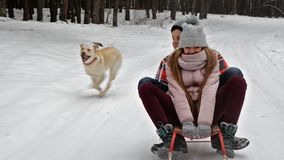 享受在森林公路的少年女孩和男孩雪橇乘驾在冬天 股票录像