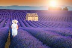享受在淡紫色草甸, Valensole,法国的无忧无虑的愉快的妇女自然 免版税库存图片