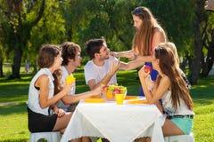享受夏天野餐的小组少年 免版税图库摄影