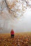 享受天的微笑的女孩在有雾的秋天森林里 免版税库存照片