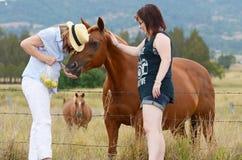 享受天的母亲&女儿一起喂养马在国家 库存图片