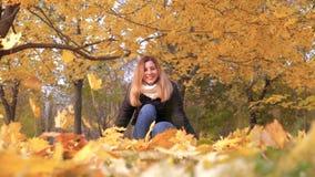 享受妇女投掷的秋叶滑稽笑在五颜六色的森林叶子 股票视频