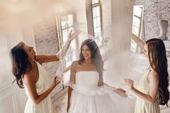 享受婚姻的准备 免版税库存图片