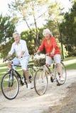 享受循环乘驾的高级夫妇 图库摄影