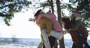 享受时间的微笑的大吸引人夫妇在一个坚硬冬日在多雪的森林夫人中间在 股票录像