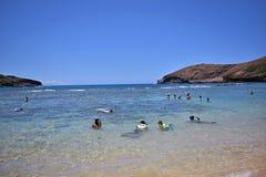 享受海滩活动和snorkling在Hanauma海湾,夏威夷的人们 免版税库存图片