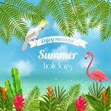 享受热带夏天背景 库存图片