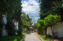 享受看法在Sidi顶部Bou Saïd小山  图库摄影