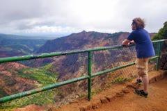 享受看法的年轻男性游人入Waimea峡谷,考艾岛,夏威夷 免版税图库摄影