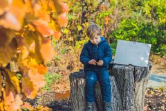 享受秋天天的逗人喜爱的小孩男孩 colo的学龄前孩子 免版税库存图片
