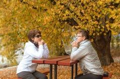 享受秋天的两个人在昆斯敦江边 库存图片