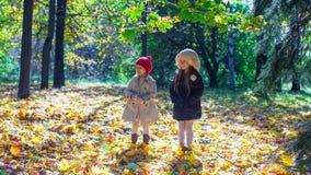 享受秋天的两个可爱的小女孩晴朗 免版税库存图片