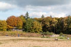 享受秋天的人们在荷兰 免版税库存照片
