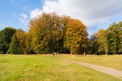 享受秋天的人们在荷兰 库存图片