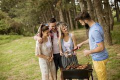 享受自然的小组年轻人烤肉聚会 图库摄影