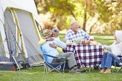 享受野营假日的两对资深夫妇 免版税库存照片