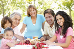 享受野餐的三对一代西班牙夫妇在公园 图库摄影