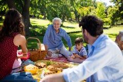享受野餐的多一代家庭在公园 免版税库存图片