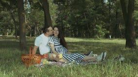 享受野餐的富感情的怀孕的家庭在公园 股票视频