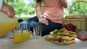 享受野餐的愉快的家庭 影视素材