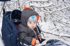 享受雪橇乘驾的小男孩 库存照片