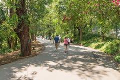享受他们的休闲的人们在Aclimacao公园走 免版税库存照片