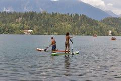 享受直立的桨搭乘的人们在流血的湖,斯洛文尼亚 库存图片