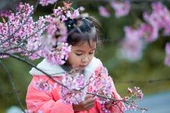享用与美丽的桃红色樱花庭院的逗人喜爱的亚裔儿童女孩 免版税库存图片