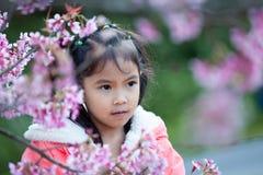 享用与美丽的桃红色樱花庭院的逗人喜爱的亚裔儿童女孩 库存照片
