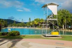 享用公开室外游泳池的游人 图库摄影